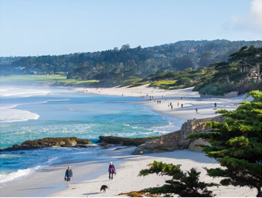 Carmel By The Sea California Bed And Breakfast